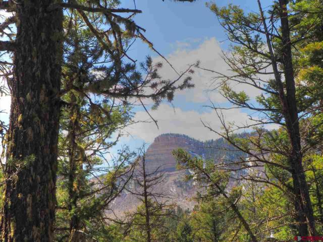 1950 Lake Purgatory Drive, Durango, CO 81301 (MLS #730726) :: Durango Mountain Realty