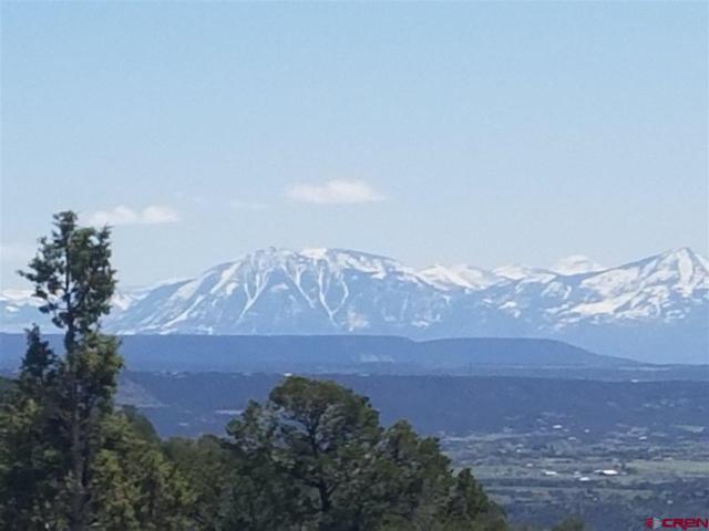 TBD High Park Rd, Cedaredge, CO 81413 (MLS #730813) :: The Dawn Howe Group | Keller Williams Colorado West Realty