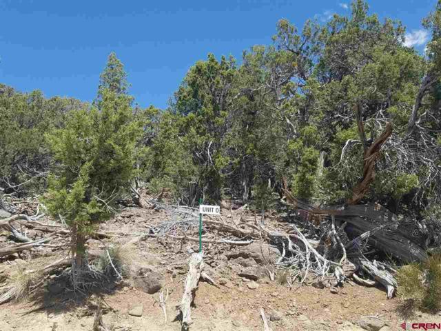 TBD Belden Road, Cedaredge, CO 81413 (MLS #730814) :: The Dawn Howe Group | Keller Williams Colorado West Realty