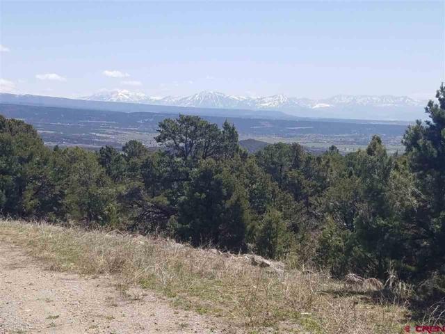 TBD Belden Road, Cedaredge, CO 81413 (MLS #730820) :: The Dawn Howe Group | Keller Williams Colorado West Realty
