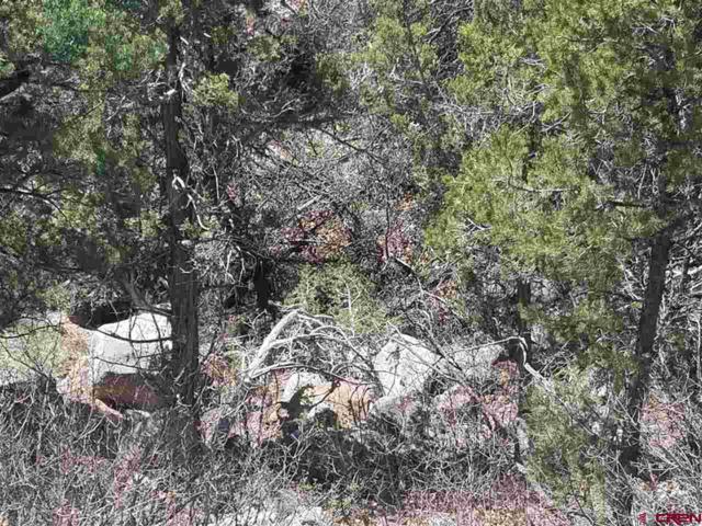 TBD San Juan Vista Rd, Cedaredge, CO 81413 (MLS #730824) :: The Dawn Howe Group | Keller Williams Colorado West Realty
