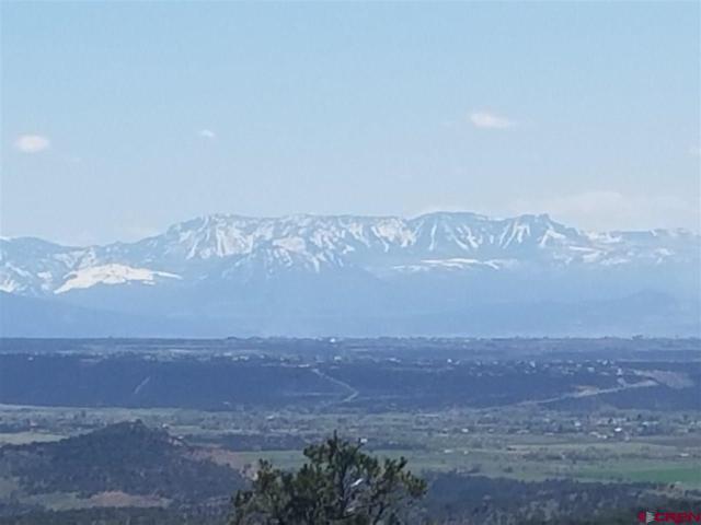 TBD High Park Rd, Cedaredge, CO 81413 (MLS #730826) :: The Dawn Howe Group | Keller Williams Colorado West Realty