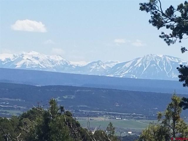 TBD San Juan Vista Rd, Cedaredge, CO 81413 (MLS #730830) :: The Dawn Howe Group | Keller Williams Colorado West Realty