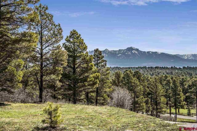 714 Oxbow Circle, Pagosa Springs, CO 81147 (MLS #730911) :: CapRock Real Estate, LLC