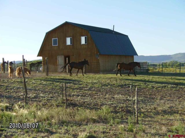10516 County Road 15, South Fork, CO 81154 (MLS #731743) :: Durango Home Sales