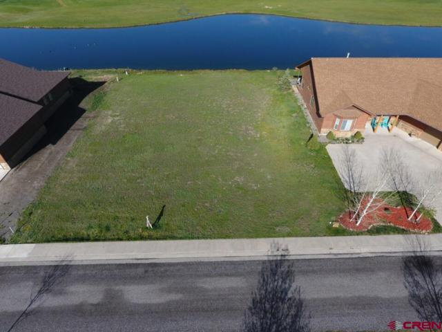 313 Blue Heron Circle, Pagosa Springs, CO 81147 (MLS #731927) :: Durango Home Sales