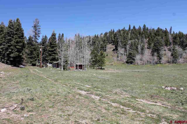 74 Eckart Lane, Durango, CO 81301 (MLS #732221) :: Durango Mountain Realty