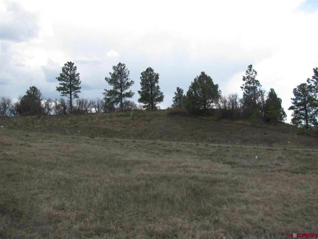165 Incline Circle Circle, Pagosa Springs, CO 81147 (MLS #732297) :: CapRock Real Estate, LLC