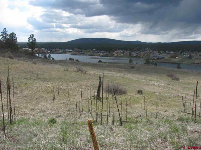453 Incline Circle Circle, Pagosa Springs, CO 81147 (MLS #732574) :: CapRock Real Estate, LLC