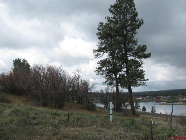 397 Incline Circle Circle, Pagosa Springs, CO 81147 (MLS #732576) :: CapRock Real Estate, LLC