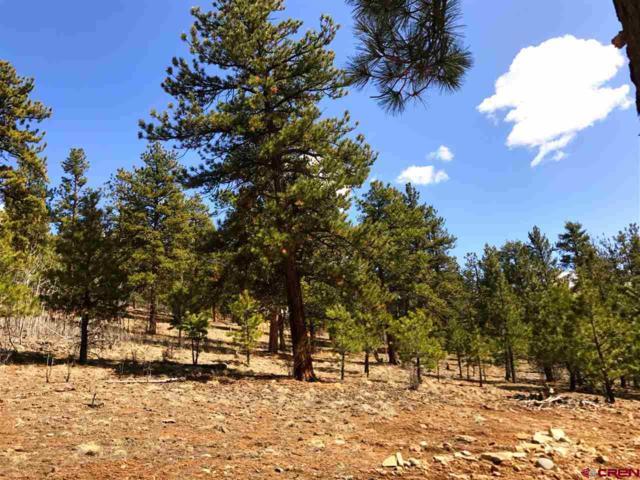 98 Escondida Drive, South Fork, CO 81154 (MLS #732968) :: Durango Home Sales