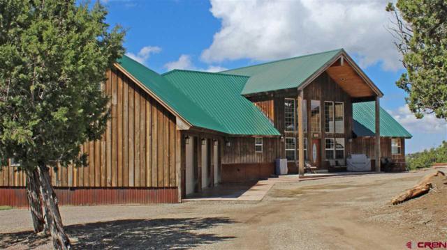 24540 Road V.4, Dolores, CO 81323 (MLS #733115) :: Durango Home Sales