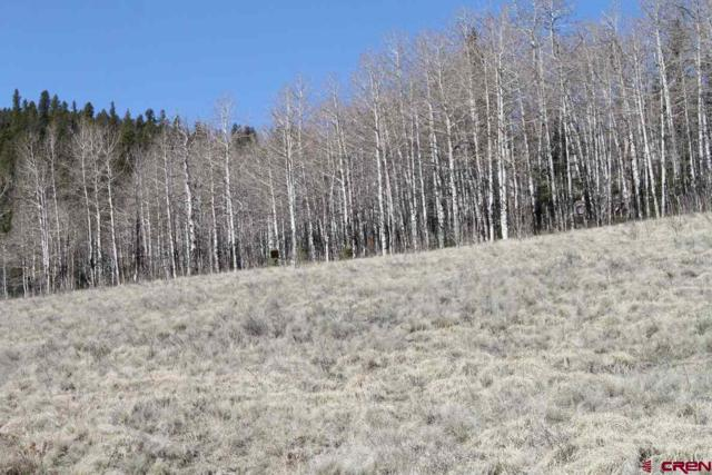 32279 Spring Creek Drive, Creede, CO 81130 (MLS #733511) :: CapRock Real Estate, LLC