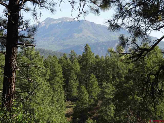 236 W Log Hill Road, Pagosa Springs, CO 81147 (MLS #733532) :: CapRock Real Estate, LLC