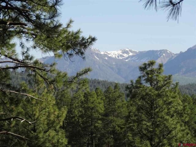 334 W Log Hill Road, Pagosa Springs, CO 81147 (MLS #733567) :: CapRock Real Estate, LLC