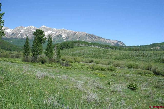 59 Chickasaw Trail, Gunnison, CO 81230 (MLS #733752) :: Durango Home Sales