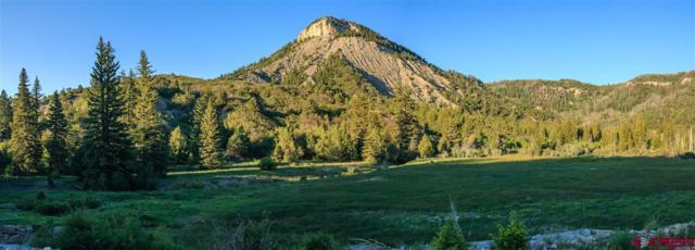 10050 Cr 29 Lot # 32 & 33, Dolores, CO 81324 (MLS #733787) :: Durango Home Sales