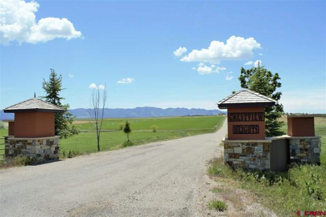 Lot 9 Road 23.5, Cortez, CO 81323 (MLS #733919) :: The Dawn Howe Group | Keller Williams Colorado West Realty