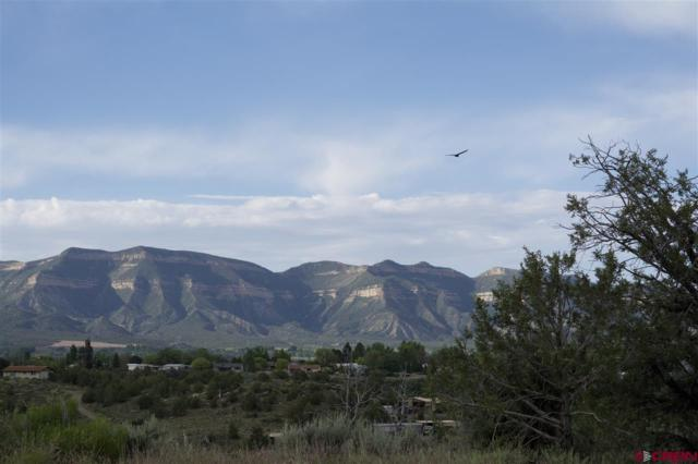 TBD Lot 6 Road 24.3, Cortez, CO 81321 (MLS #734386) :: The Dawn Howe Group | Keller Williams Colorado West Realty