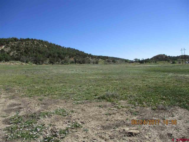 TBD Rd. L.4 Loop  Lot 9, Mancos, CO 81328 (MLS #734549) :: Durango Home Sales