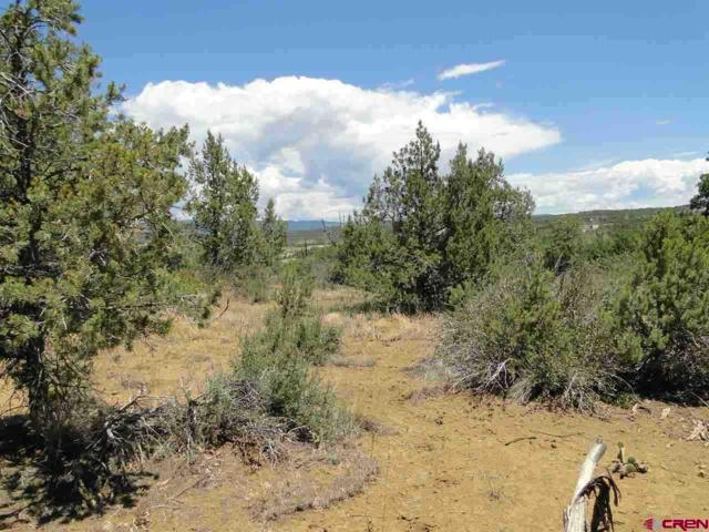 TBD Cr 232, Durango, CO 81301 (MLS #734607) :: Durango Mountain Realty
