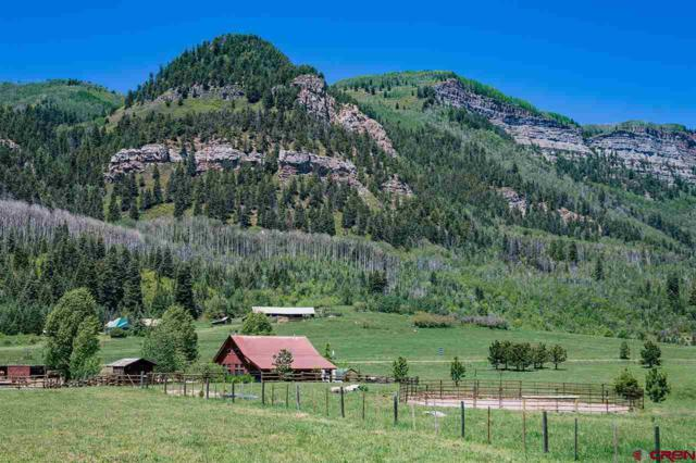 51 Haviland Lake Road, Durango, CO 81301 (MLS #734911) :: Durango Mountain Realty