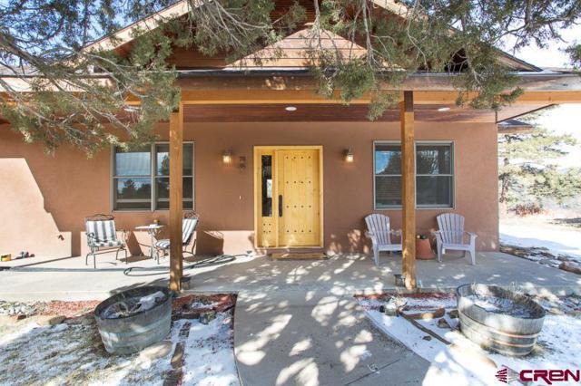 171 Rim Dr, Durango, CO 81301 (MLS #735266) :: Durango Mountain Realty