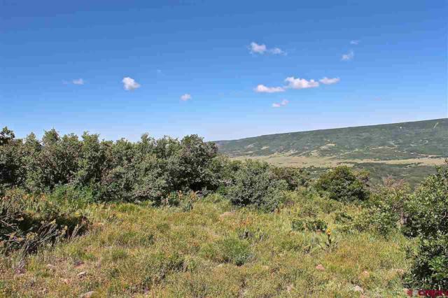 10050 Cr 29 Lot # 53, Dolores, CO 81324 (MLS #735286) :: Durango Home Sales
