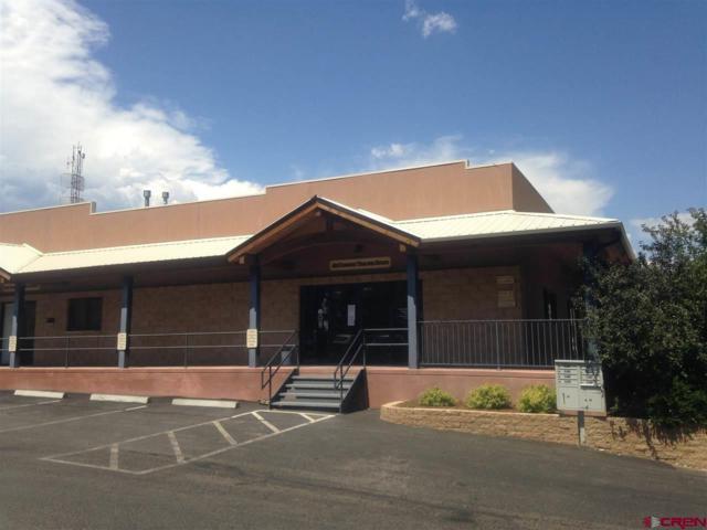 190 Turner Drive D, Durango, CO 81303 (MLS #735300) :: Durango Mountain Realty