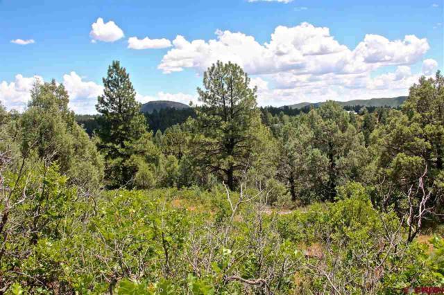 285 Logging Trail Road, Durango, CO 81303 (MLS #735623) :: Durango Mountain Realty