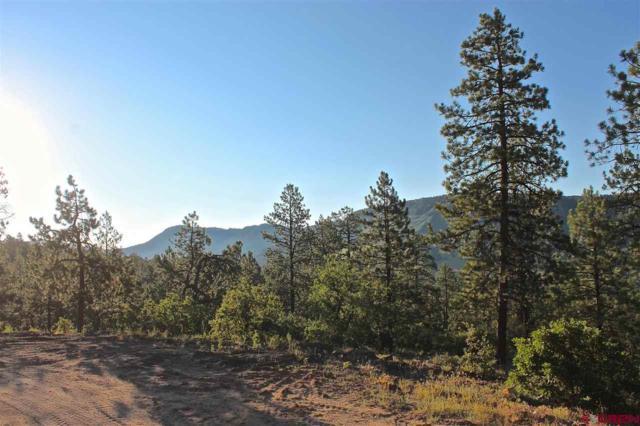 339 Big Bear Trail, Durango, CO 81301 (MLS #735627) :: Durango Mountain Realty