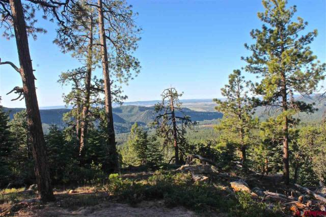TBD Taylor Ranch Road, Durango, CO 81301 (MLS #735631) :: Durango Mountain Realty