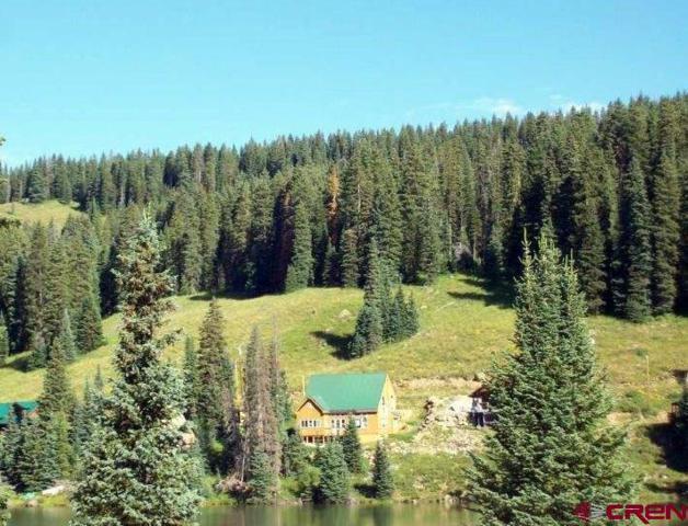 20956 Twin Lake Drive, Cedaredge, CO 81413 (MLS #735874) :: Durango Home Sales