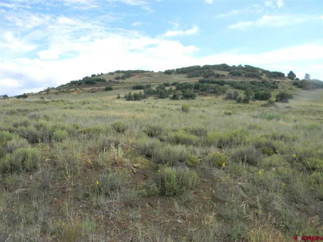 208 Spring Creek Circle, Chromo, CO 81128 (MLS #735875) :: Durango Home Sales