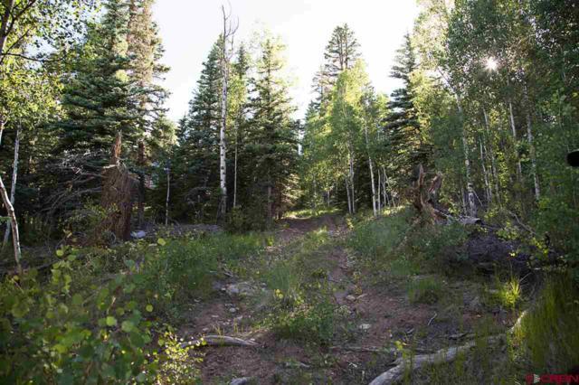 32008 Elk Trail Ln, Creede, CO 81130 (MLS #735955) :: CapRock Real Estate, LLC