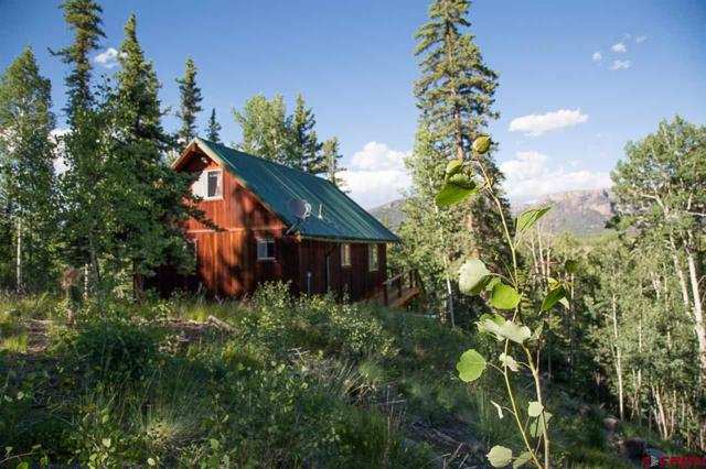 32041 Stagecoach Trail, Creede, CO 81130 (MLS #735956) :: CapRock Real Estate, LLC