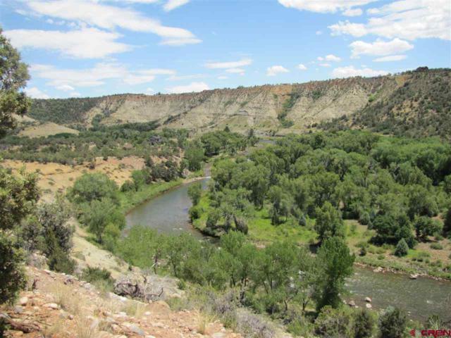468 Jack Rabbit Trail, Durango, CO 81303 (MLS #736368) :: Durango Mountain Realty