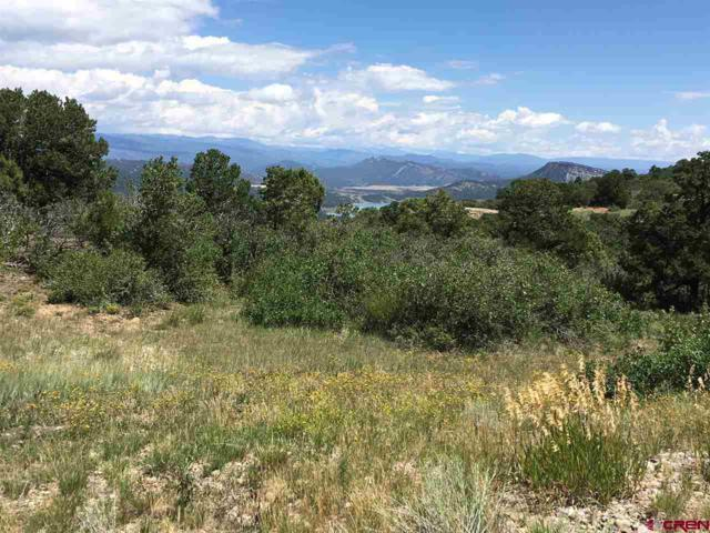 TBD Deer Valley Road, Hesperus, CO 81326 (MLS #736480) :: Durango Home Sales