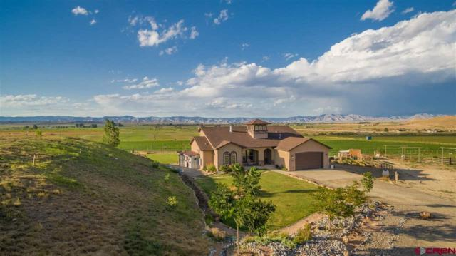 1690 8 Road, Mack, CO 81525 (MLS #736807) :: Keller Williams CO West / Mountain Coast Group
