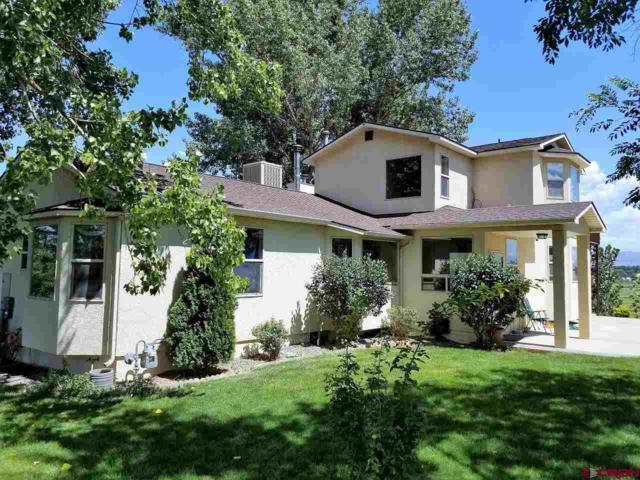 6098 5700 Road, Olathe, CO 81425 (MLS #736824) :: Keller Williams CO West / Mountain Coast Group