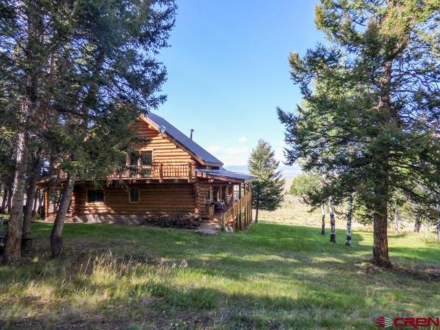 7891 County Road 25, Powderhorn, CO 81243 (MLS #736829) :: Keller Williams CO West / Mountain Coast Group