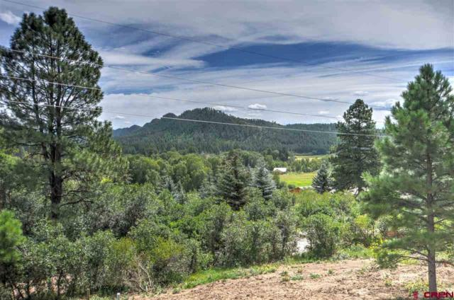 729 Ludwig Dr, Bayfield, CO 81122 (MLS #736868) :: CapRock Real Estate, LLC