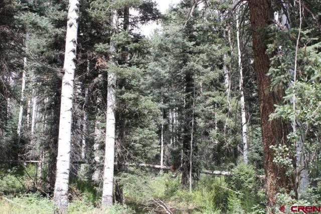 TBD Grizzly Lane, Durango, CO 81301 (MLS #736873) :: Durango Mountain Realty