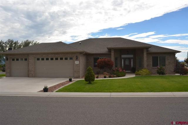 404 Holly Drive, Montrose, CO 81401 (MLS #736878) :: Durango Mountain Realty