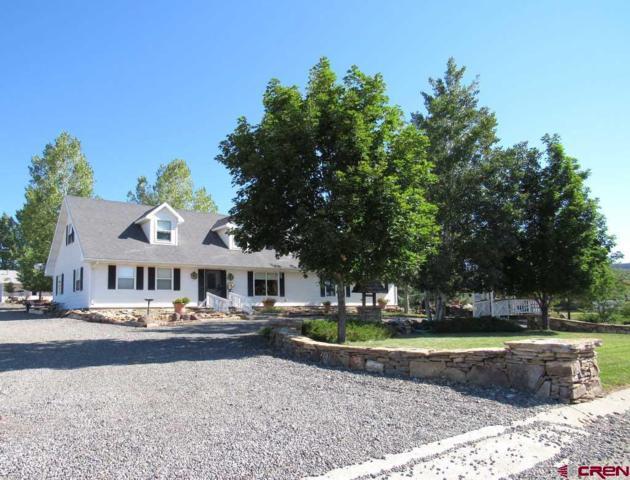 190 NE Knotty Pine Court, Cedaredge, CO 81413 (MLS #736880) :: Durango Mountain Realty