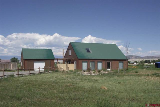 7389 6025 Road, Olathe, CO 81425 (MLS #736883) :: Durango Mountain Realty