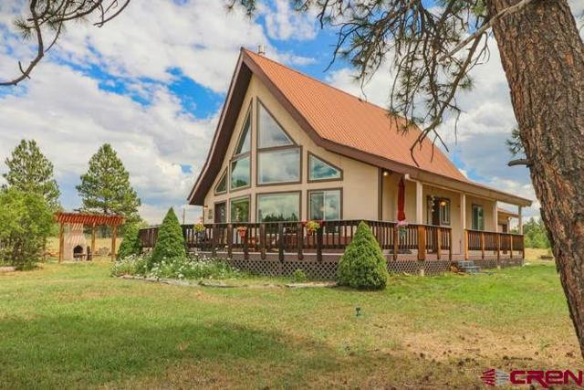 599 Old Sawmill Circle, Pagosa Springs, CO 81147 (MLS #736994) :: Durango Home Sales