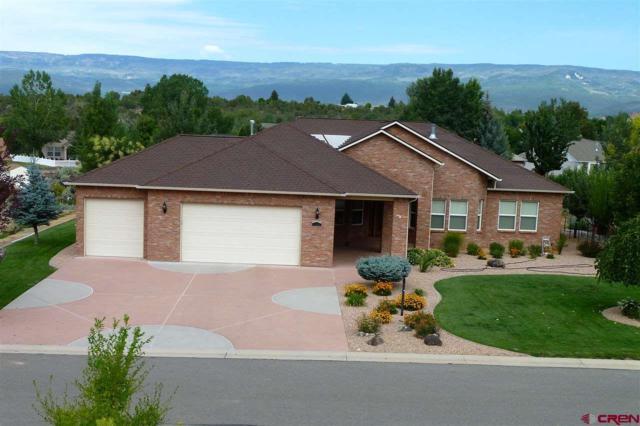 1510 SE Fairway Drive, Cedaredge, CO 81413 (MLS #737006) :: Durango Home Sales