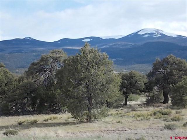 93 Explorer Way, South Fork, CO 81154 (MLS #737341) :: CapRock Real Estate, LLC