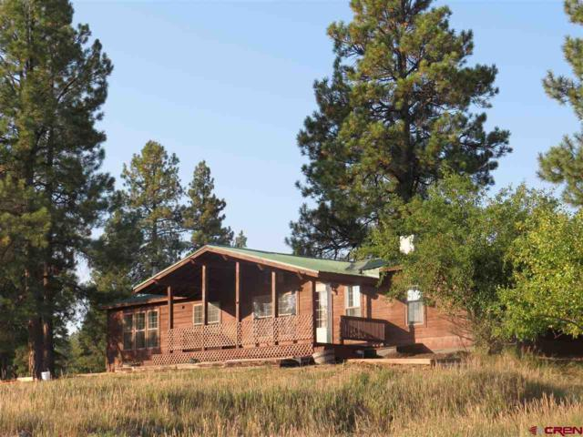 476 River Forest Dr., Pagosa Springs, CO 81147 (MLS #737352) :: Durango Home Sales
